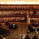 Studia w USA – nauka na najwyższym poziome i przygoda życia